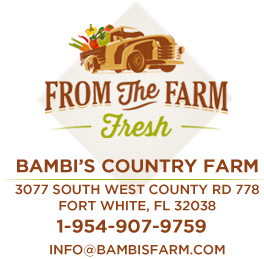 fromthefarmfresh